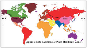 Gardening Zones Usa - gardening zone buffalo ny container gardening ideas