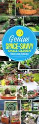 316 best garden ideas images on pinterest gardening plants and