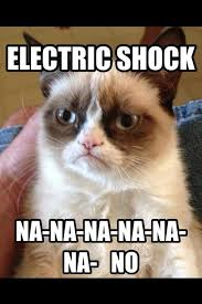 Cat Meme Ladies - heh someone made a grumpy cat meme about my lovely ladies from f x