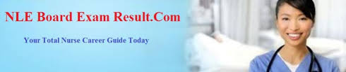 nurse sample resume cv biodata outline and content tips nle