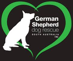 foster application german shepherd dog rescue south australia inc