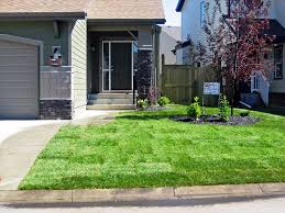 Simple Landscape Ideas by Ideas Simple Landscaping Ideas For Front Of House With Green