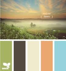 relaxing color schemes subdued aqua and coral color escape palette clean organize fix