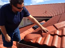 Monier Roof Tiles Roof Tile Coatings 32 With Roof Tile Coatings Sesli Zero Net