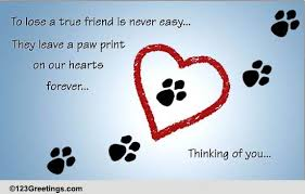 pets loss of pet cards free pets loss of pet wishes greeting