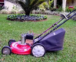 best 25 gas lawn mower ideas on pinterest lawn mower sale