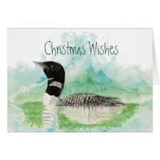 loon greeting cards zazzle