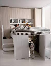 pet room ideas winsome ideas dog room decor best 25 on pinterest corner pet