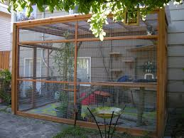 Diy Patio Mister by Catios We Build Attractive Catios And Offer Catio Spaces Diy