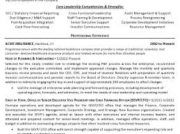 Sample Financial Controller Resume by Traffic Analyst Cover Letter