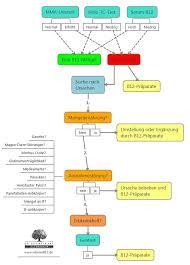 konzentrationsschwäche test vitamin b12 mangel test dr schweikart