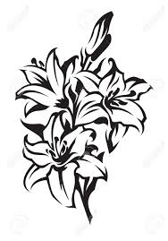 Sympathy Flowers Lily Royalty Free Cliparts Vectors And Stock Illustration Image