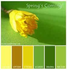 spring color spring color palettes flower inspired hues for your designs