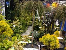 seattle greenlaker garden smarter combos that pop year round