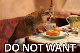 Do Not Want Meme - do not want cat meme cat planet cat planet