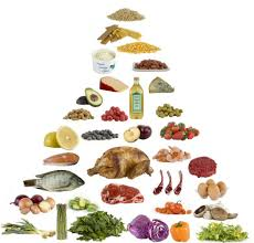 low carb food pyramid moderate to high fat and protein low in