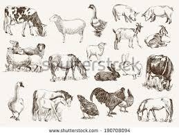sketch farming element vector download free vector art stock