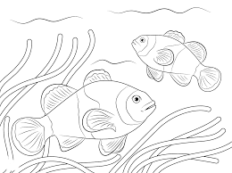 coloring clown fish coloring pages