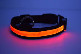 dog collar lights waterproof led dog collar led glow in the dark dog collars