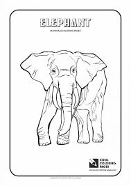 coloring pages animals christmas cards for kids to color