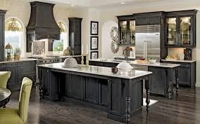 Black Kitchen Cabinets Black Kitchen Cabinets Ideas Inspirational 46 Kitchens With