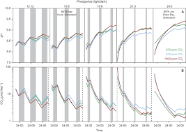 long photoperiods sustain high ph in arctic kelp forests science