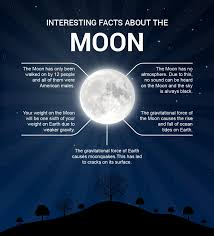 some facts about the moon visual ly