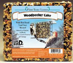 attracting woodpeckers to your backyard at wild birds forever
