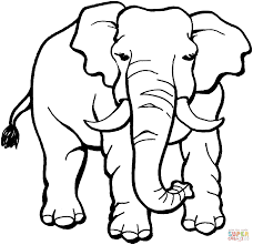elephant coloring page free printable coloring pages