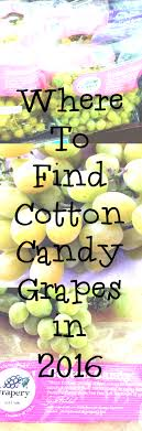 where to buy candy where to buy cotton candy grapes in 2016 eat like no one else