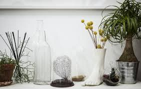 Ikea Plant Ideas by Ikea Ideas