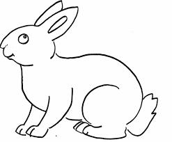 contoh gambar sketsa binatang terlengkap 2018 dp bbm