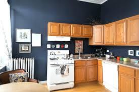 kitchen oak cabinets color ideas kitchen oak cabinets datavitablog com