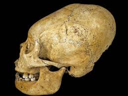 ancient peruvians gave themselves elongated skulls as a of