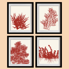 sea coral art print deep coral red algae by madeforyouprints me