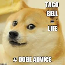 Advice Dog Meme Generator - doge meme imgflip