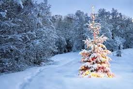 celebrate the holidays with and eco friendly traditions