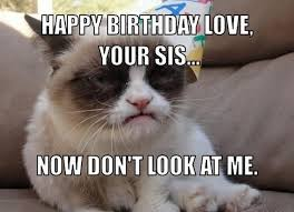 Grumpy Cat Meme Happy - grumpy cat meme happy birthday pictures reference