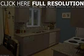 leonawongdesign co painted kitchen cabinet ideas freshomel11