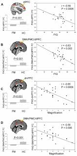 frontiers lower functional connectivity of the periaqueductal