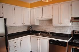 Kitchen Cabinet Door Fronts Replacements Remodelling Your Design Of Home With Unique Trend Kitchen Cabinet