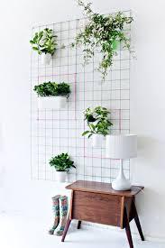 Indoor Vertical Gardens - indoor vertical garden 10 so peachy
