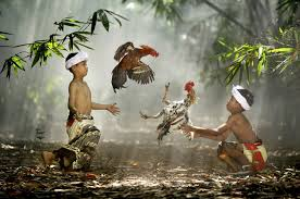 Best Photography National Geographic Best Award Photograph 35