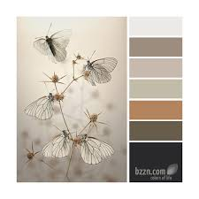 pastel butterflies liked on polyvore featuring colors palettes