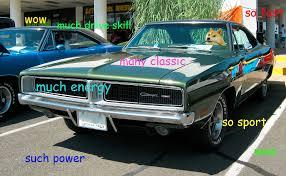 Doge Car Meme - much doge