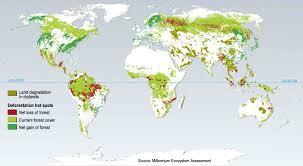 Amazon Rainforest Map Presentation Name On Emaze
