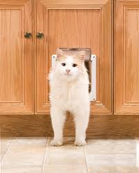 amazon com petsafe interior 2 way locking cat door white pet
