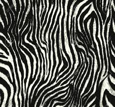 animal print pictures 7635