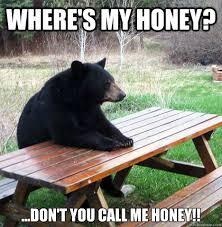 Honey Meme - where s my honey don t you call me honey waiting bear