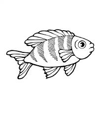 rainbow fish coloring ngbasic